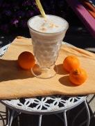 Orangecicle Protein Shake